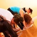 Beginner Yoga Basics Classes