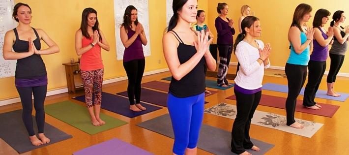 Beginners Yoga Classes